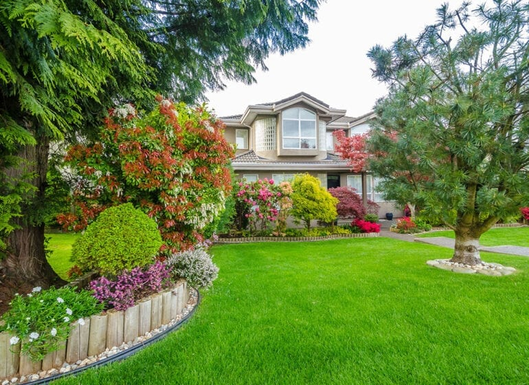 Know Your Grass To Have A Thriving Lawn